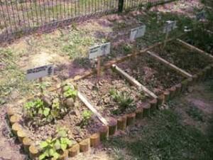 Vrt-s-travniškimi-rastlinami